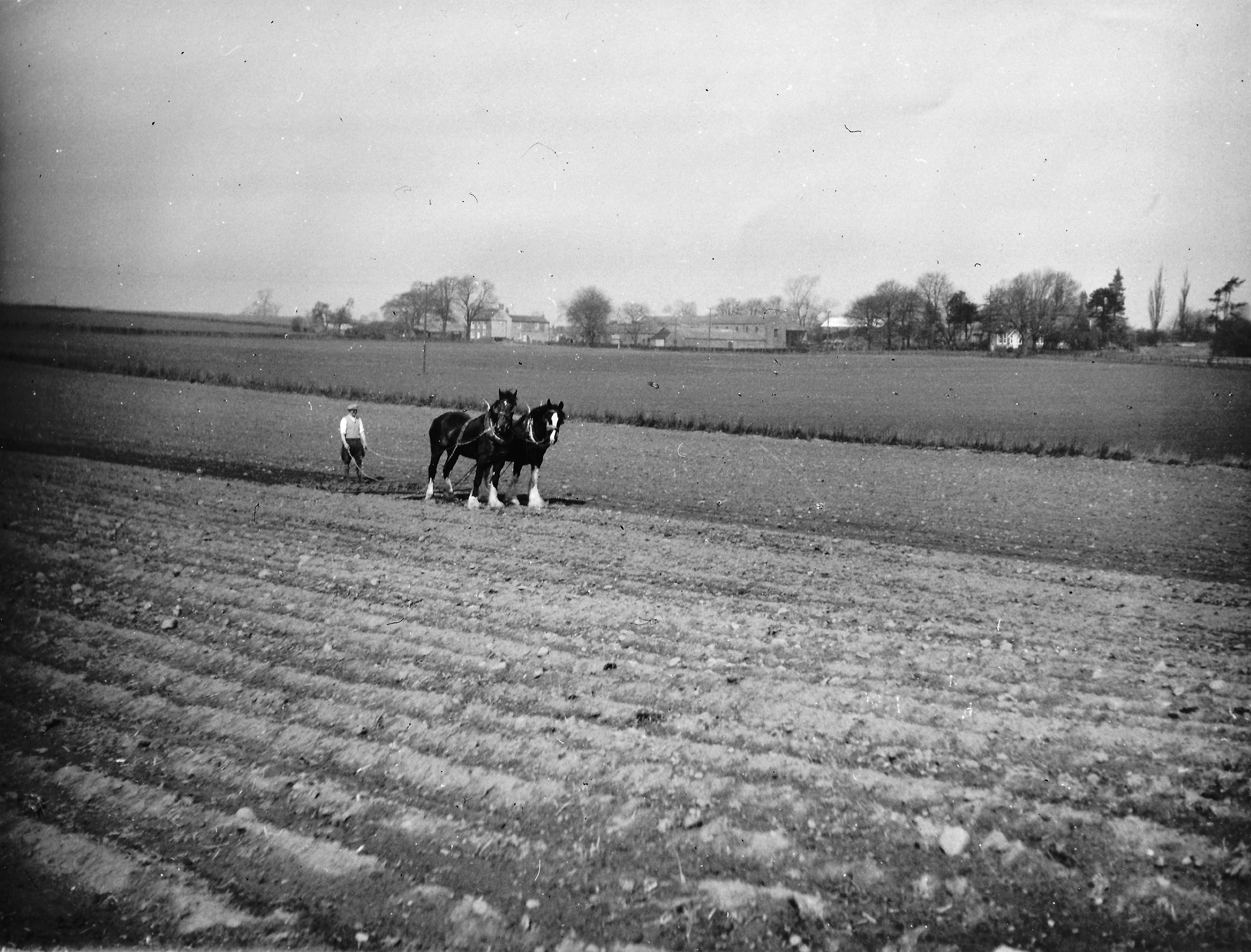 Grange Farm c1960